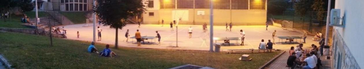 Športno društvo Partizan Semič